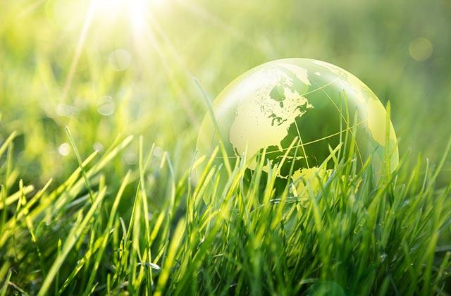 Waku organics myy maahantuomia luomukosmetiikkaa yrityksille